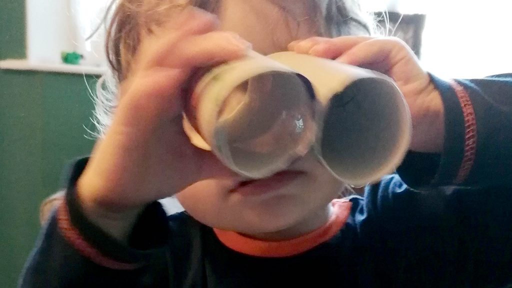 Hoglets craft - make your own binoculars - hero