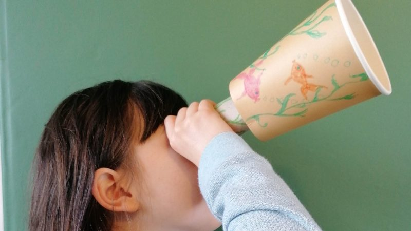 Hoglets craft - make a pirate telescope
